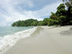 The beach at Manuel Antonio National Park.