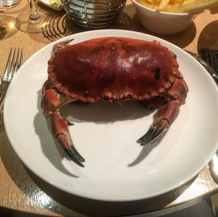 Crab at La Suite, Perros-Guirec