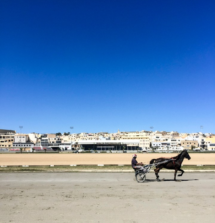 Malta Polo Club, Valletta, Malta