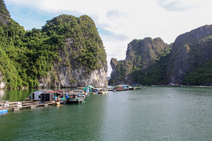 Floating village in Cat Ba Bay, Vietnam