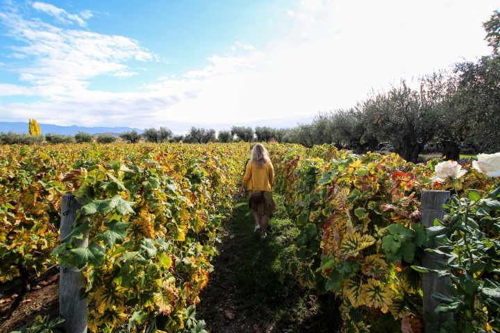 Nicola in the vines at Altavista Winery, Mendoza, Argentina